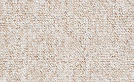 CHART-TOPPER-II-12'-J0131-APPLE-CORE-00241-main-image