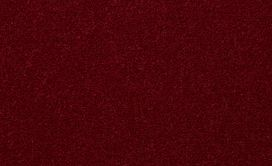 EMPHATIC-II-36-54256-CRANBERRY-WHIP-56843-main-image