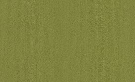 COLOR-ACCENTS-54462-GREEN-62350-main-image
