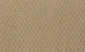 LATEST-TREND-54098-ALPACA-98700-main-image