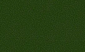 FREE-TIME-5MM-54731-FIELD-GREEN-00300-main-image