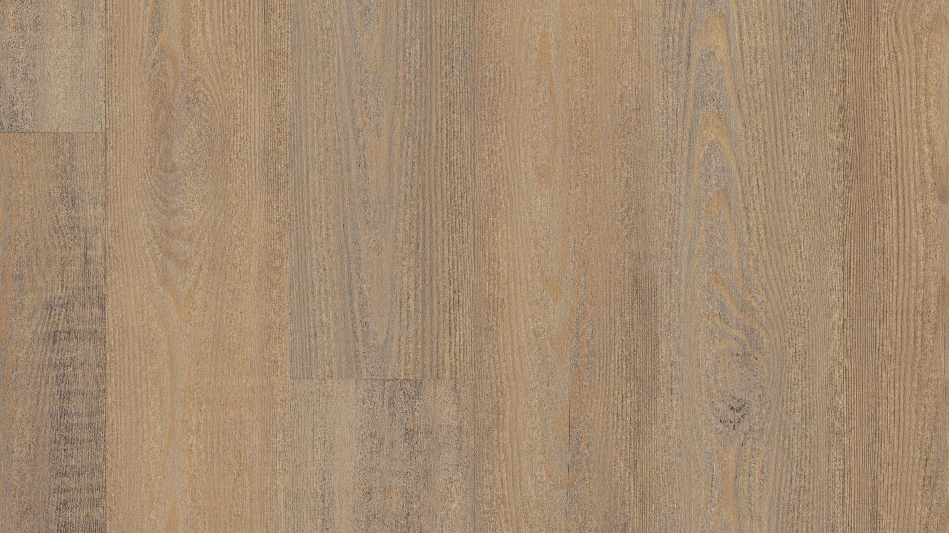 Privet Pine EVP Vinyl Flooring Product Shot