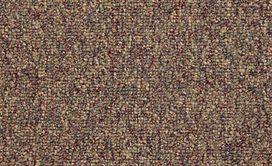 CAMDEN-HARBOR-UNITARY-54215-FRUITWOOD-14770-main-image