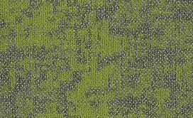 ARID-54848-TAIGA-00315-main-image