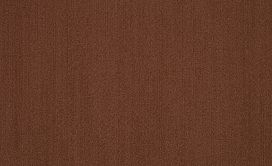 COLOR-ACCENTS-54462-CHOCOLATE-62713-main-image
