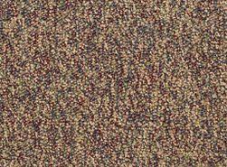 FRANCHISE-II-26-54745-FRUITWOOD-00770-main-image