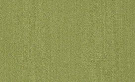 COLOR-ACCENTS-9X36-54858-BRITE-GREEN-62325-main-image