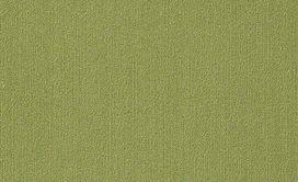 COLOR-ACCENTS-9X36-54858-BRITE-GREEN-62325-main-image