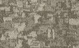 ARID-54848-PINGO-00702-main-image