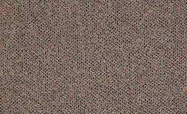 PHENOMENON-26-54643-PARADOX-42206-main-image