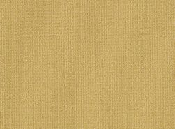 COLOR-ACCENTS-18-X-36-54786-OCHRE-62210-main-image