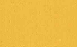 COLOR-ACCENTS-54462-CITRUS-62201-main-image