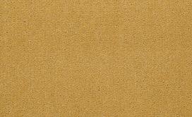 EMPHATIC-II-30-54255-SUNFLOWER-56222-main-image