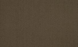 COLOR-ACCENTS-54462-TIMBER-62309-main-image