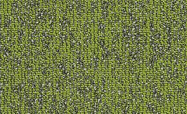 BASIN-54847-TAIGA-00315-main-image
