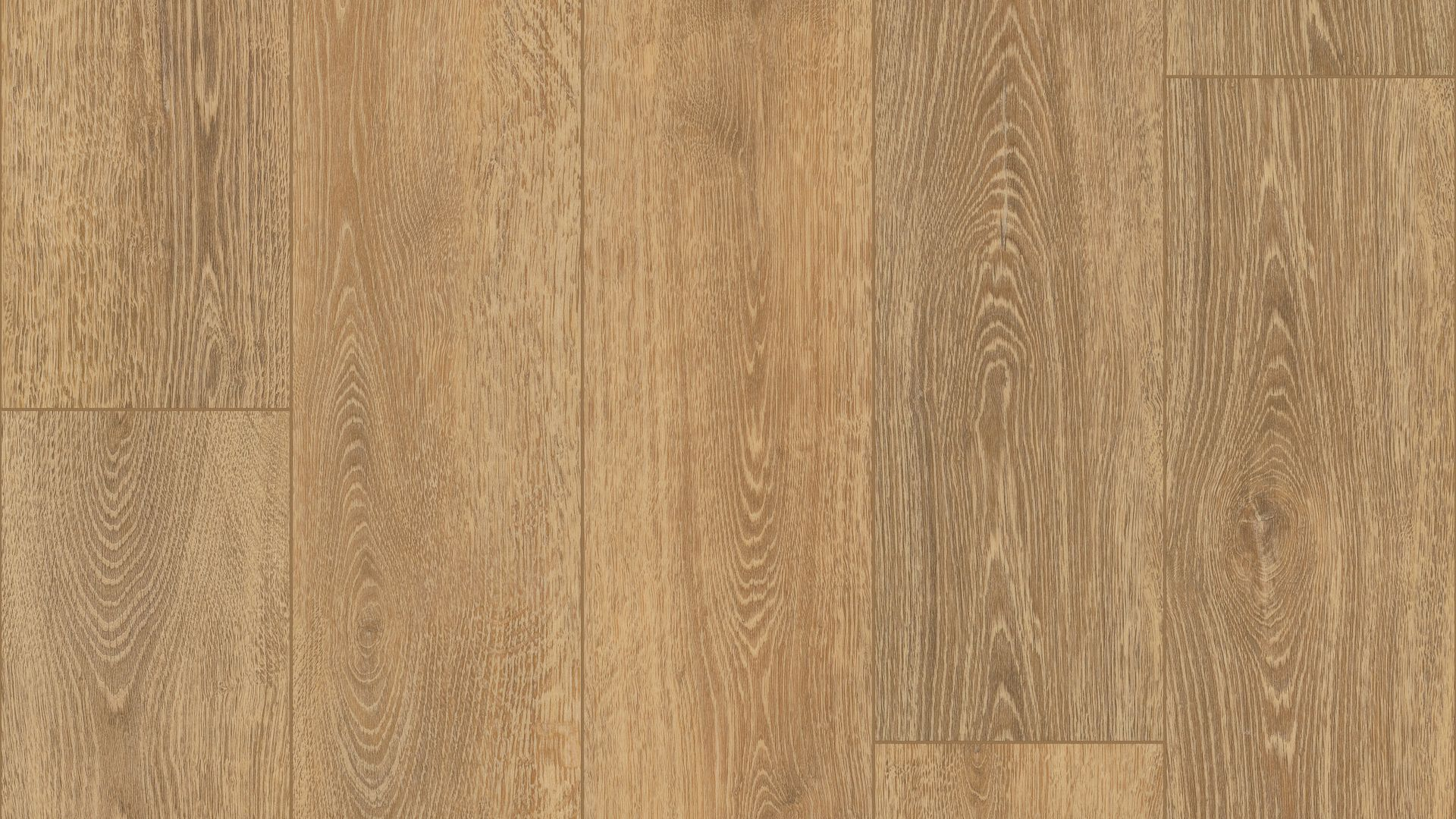 Tampa Oak EVP Vinyl Flooring Product Shot