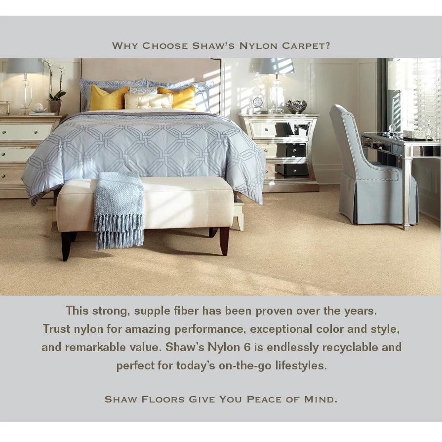 shaw-advantages-6-nylon-carpet-Sws.jpg