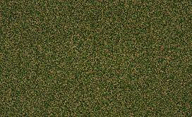 PARK-CENTRAL-54635-SEA-GRASS-00310-main-image