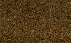 CABANA-(T)-54631-COPPER-GLAZE-00611-main-image