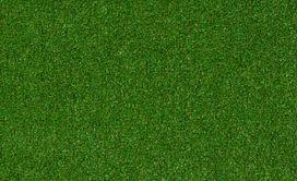 CABANA-(T)-54631-BACKYARD-00310-main-image