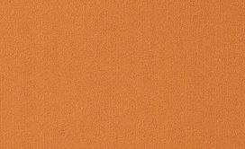 COLOR-ACCENTS-18-X-36-54786-ORANGE-62675-main-image