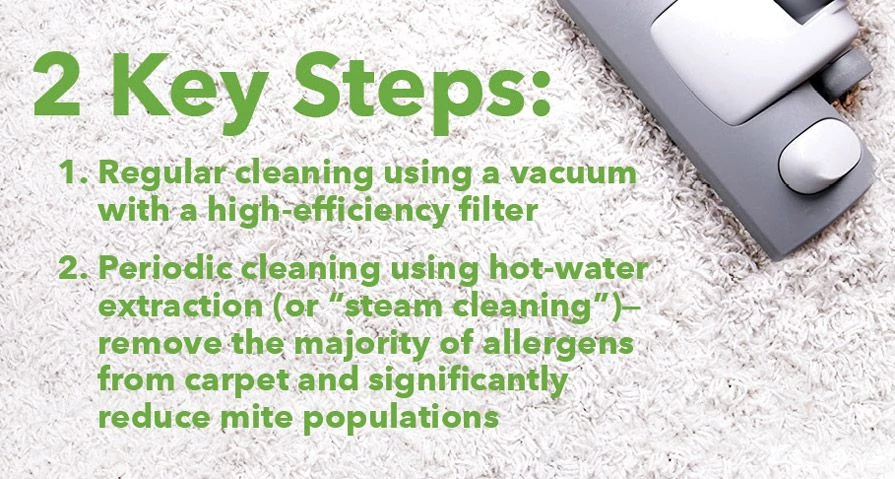 Two Key Steps: Regular Cleaning Using a Vaccum With a High-Efficiency Filter