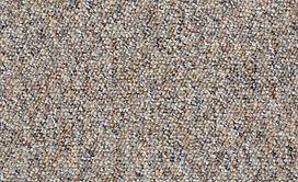 CHART-TOPPER-II-12'-J0131-RUSTIC-RETREAT-00742-main-image