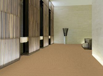 LATEST TREND 54098 CAMELBACK 98280 room image