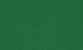 COLOR-ACCENTS-9X36-54858-DARK-GREEN-62375-main-image