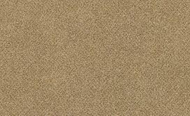 CALM-54738-WORD-00202-main-image