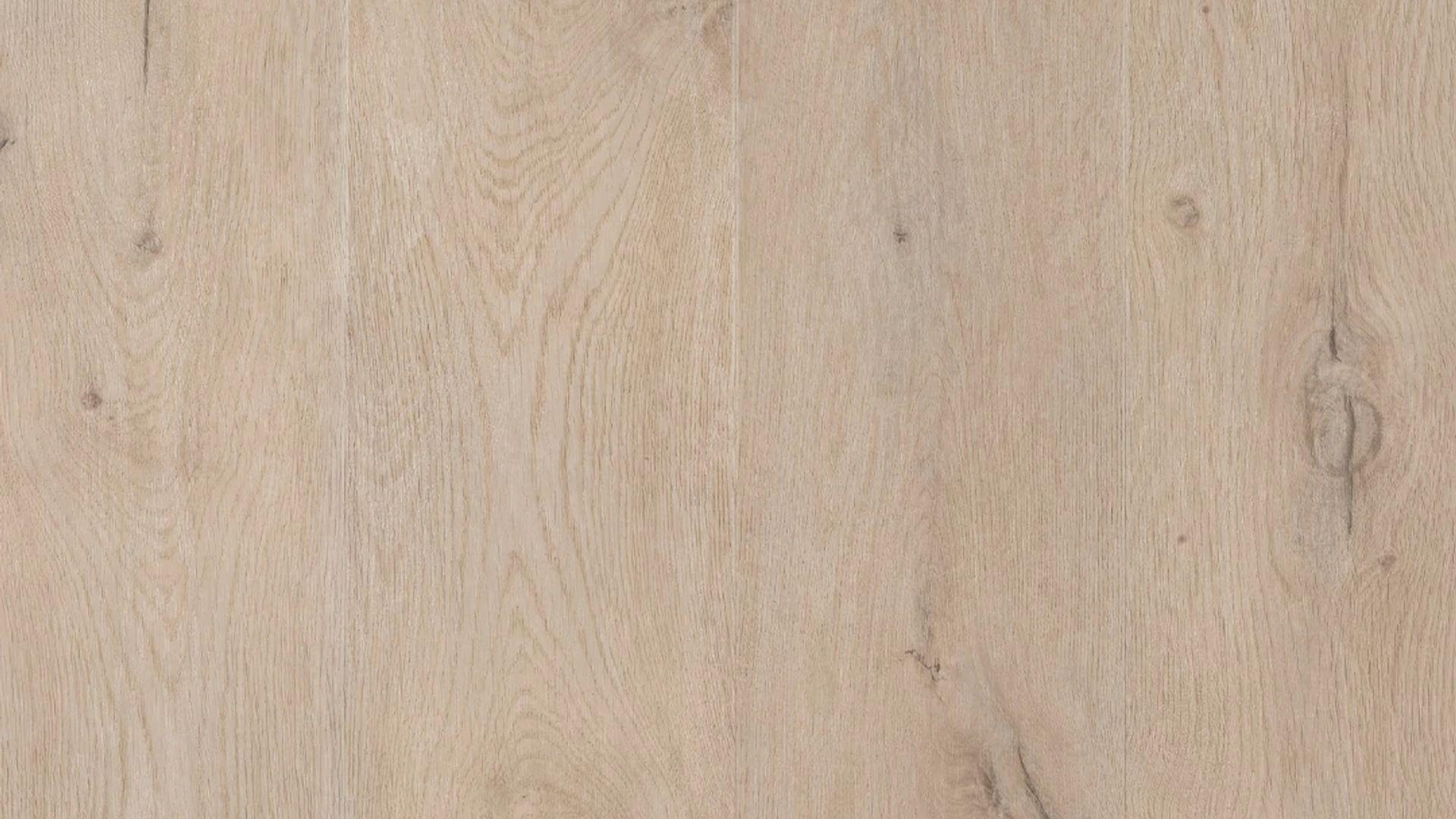 Forest EVP Vinyl Flooring Product Shot