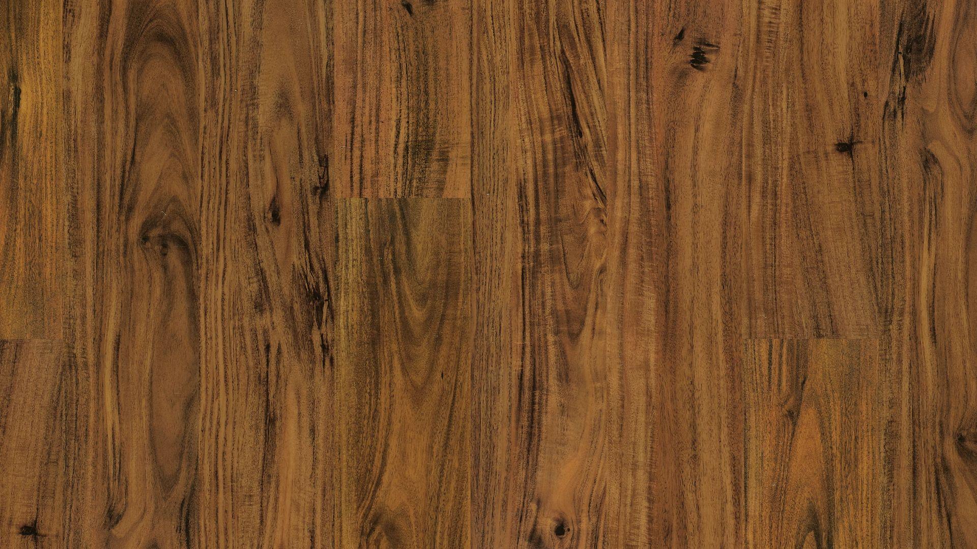 ALICE SPRINGS ACACIA EVP Vinyl Flooring Product Shot