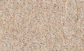 CHART-TOPPER-II-12'-J0131-SAHARA-00220-main-image