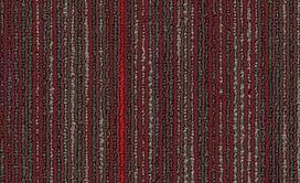 STELLAR-54902-QUIXOTIC-00800-main-image