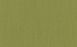COLOR-ACCENTS-54462-BRITE-GREEN-62325-main-image