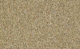 FRANCHISE-II-26-54745-WOODLAND-00240-main-image