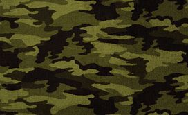 CAMOUFLAGE-54508-COVER-UP-08302-main-image