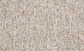 CHART-TOPPER-II-12'-J0131-DRIFTWOOD-00730-main-image