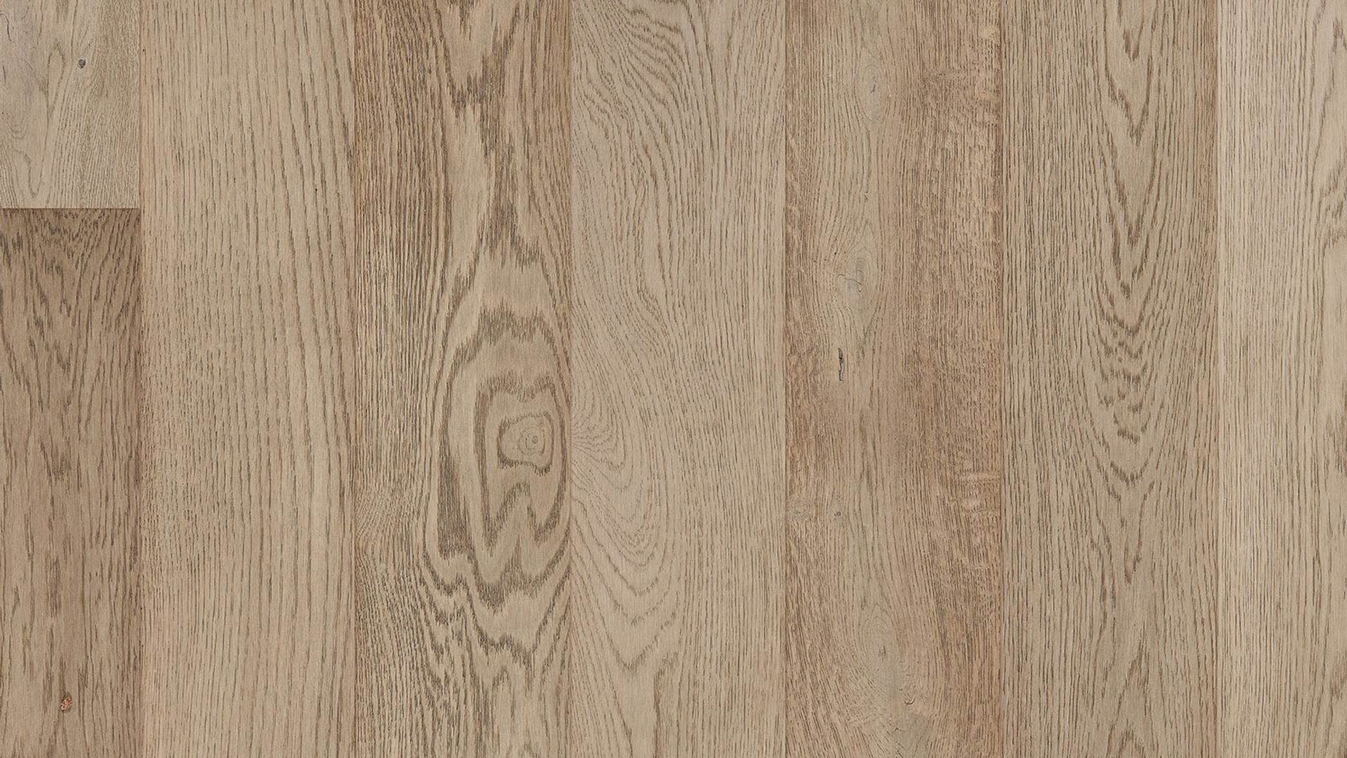 Sylvan Oak EVP Vinyl Flooring Product Shot