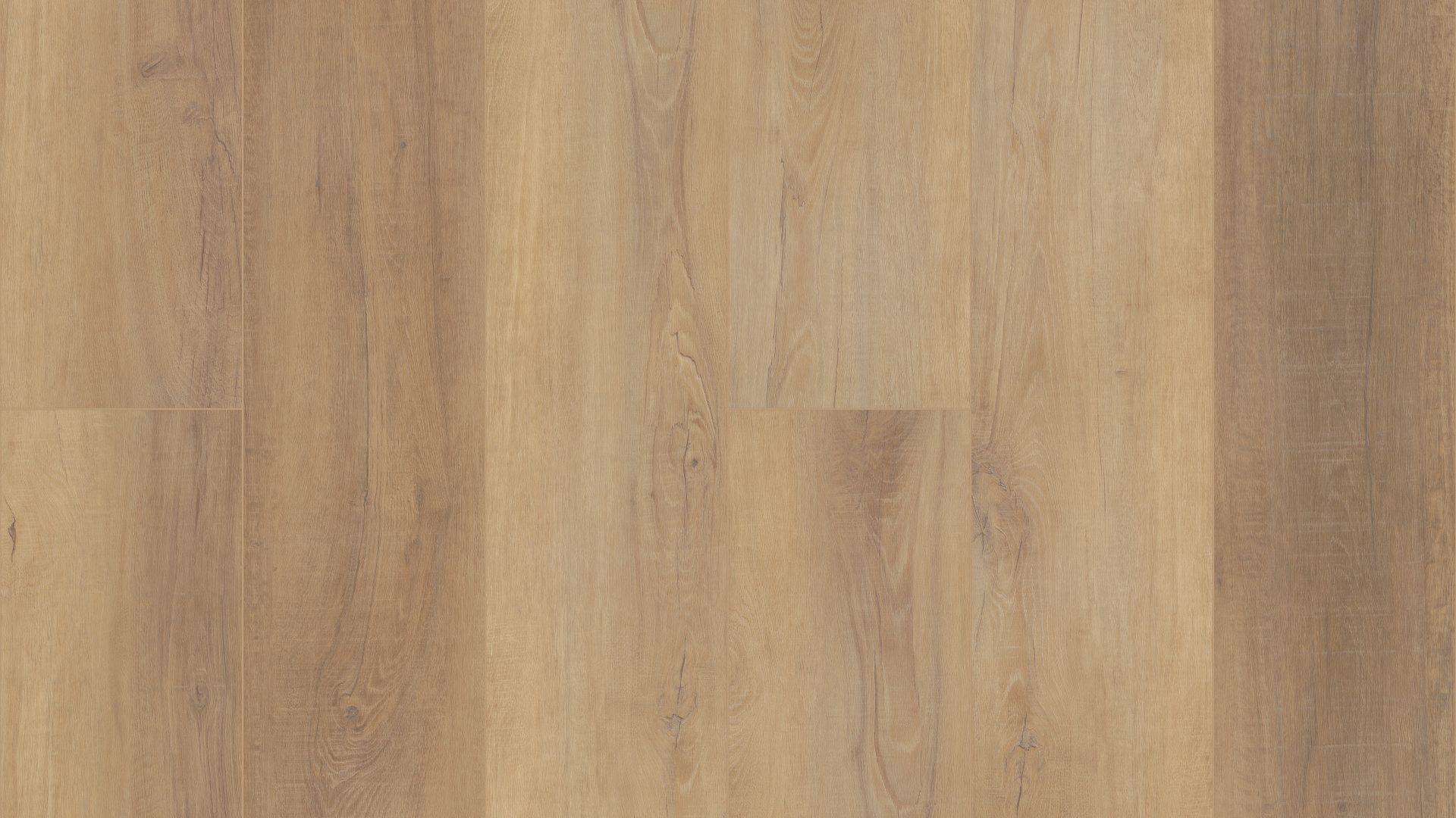 Canterbury Elm EVP Vinyl Flooring Product Shot