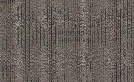 CURIOUS-WONDER-54940-INQUISITIVE-40510-main-image