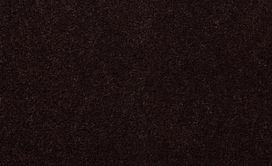 EMPHATIC-II-36-54256-COFFEE-BEAN-56731-main-image