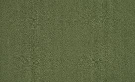COLOR-ACCENTS-54462-CACTUS-62370-main-image
