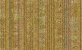 ENCODE-54926-VECTOR-00200-main-image